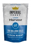 Harvest Imperial Yeast